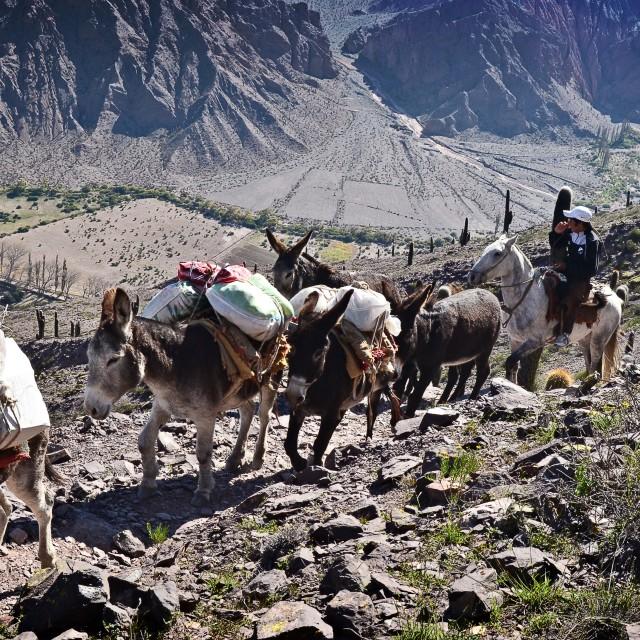 """""""Cumbre cerro Gólgota, Salta Argentina"""" stock image"""