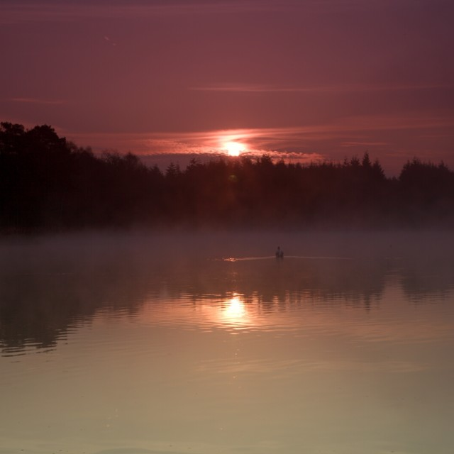 """""""Early morning mist"""" stock image"""