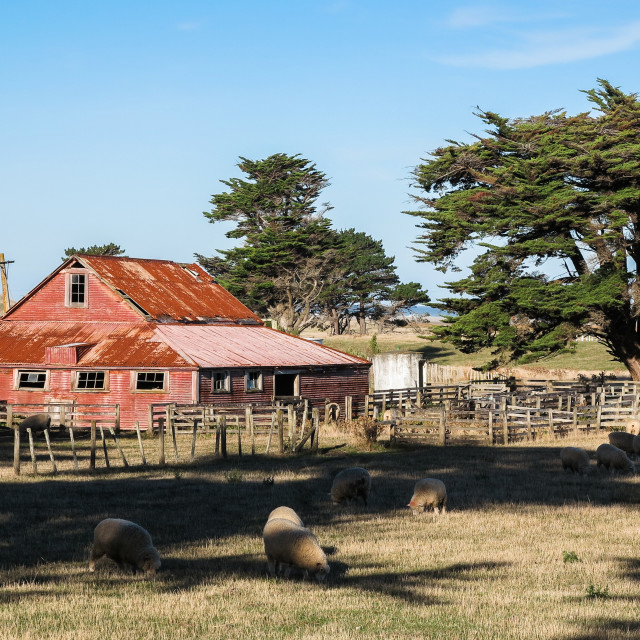 """rustic shearing shed"" stock image"