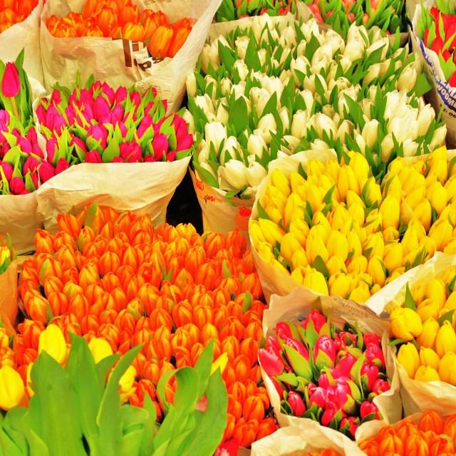 """Market Flowers"" stock image"