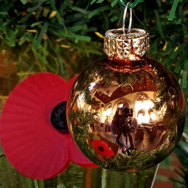 """Poppy bauble"" stock image"