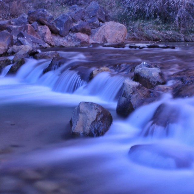 """""""Spring in zion"""" stock image"""