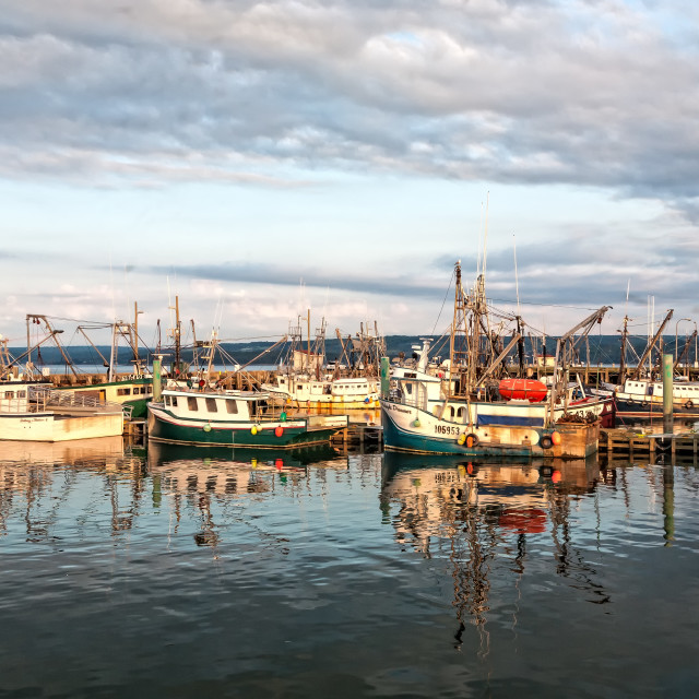 """Digby Harbour"" stock image"