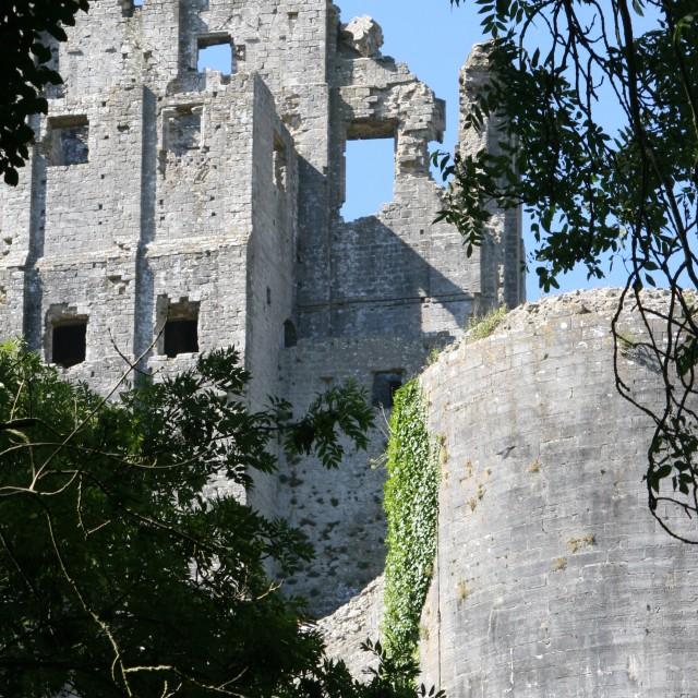"""Corfe Castle through trees"" stock image"