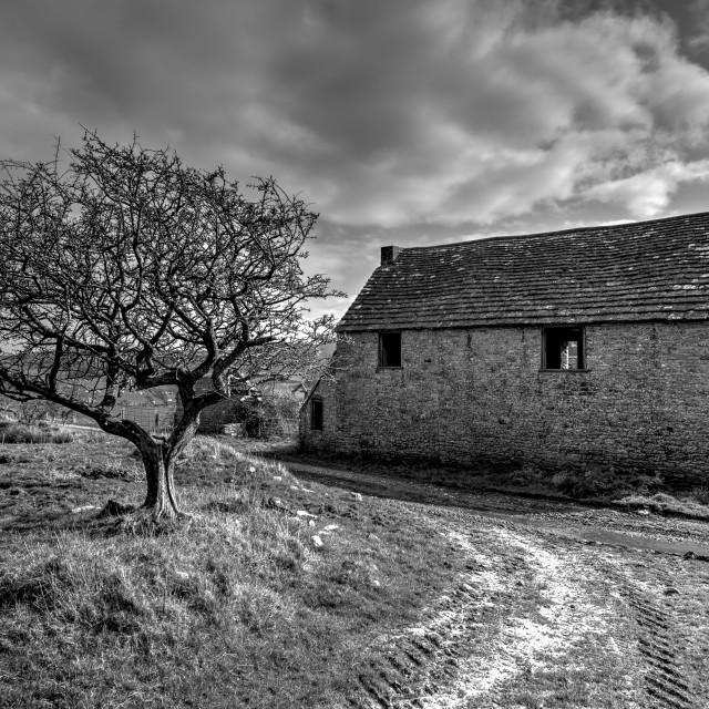 """Farm Yard Barn in Black & White - The Abandoned & Derelict Ghost Village - Tyneham, Dorset."" stock image"