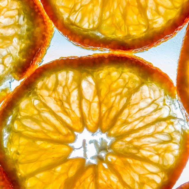 """""""Orange Slices"""" stock image"""