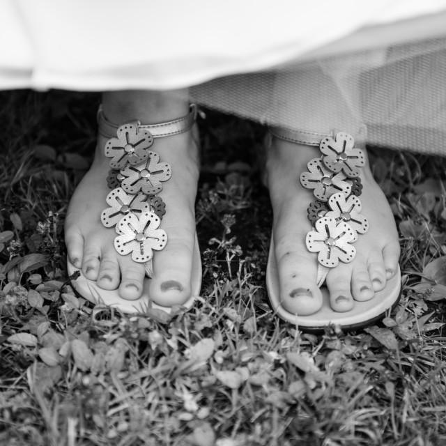 """Bride's sandals"" stock image"