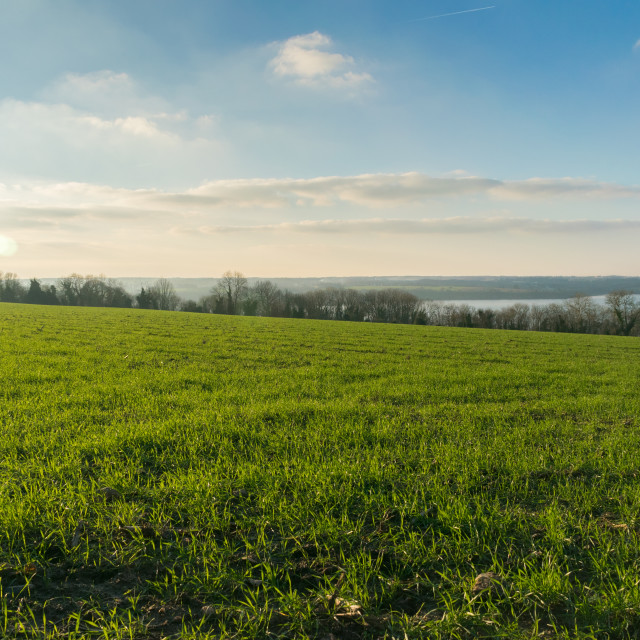 """""""Green and Blue Landscape"""" stock image"""