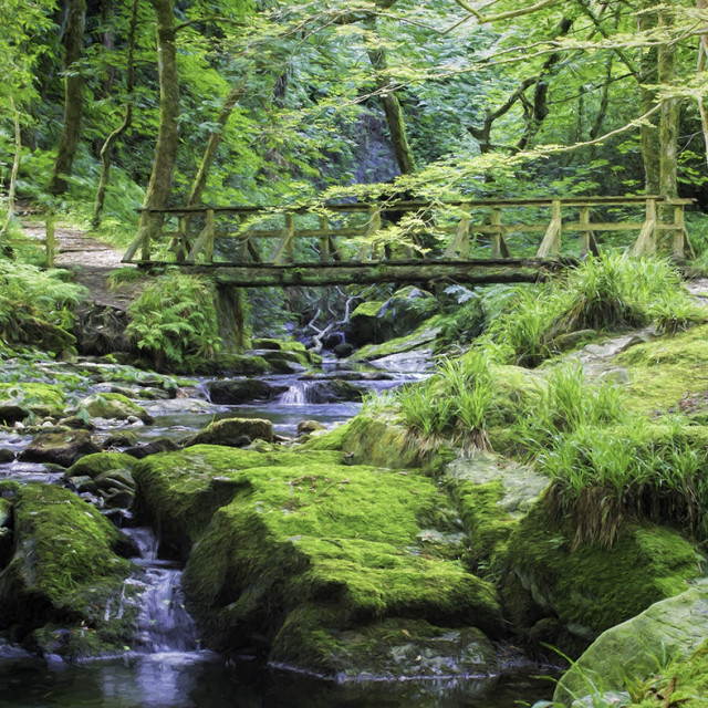 """Ballaglass Glen - Isle of Man"" stock image"