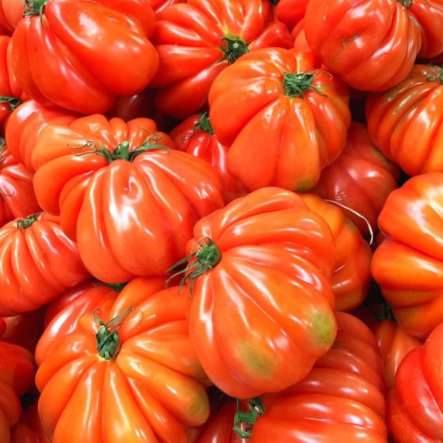 """""""Beef tomatoes"""" stock image"""