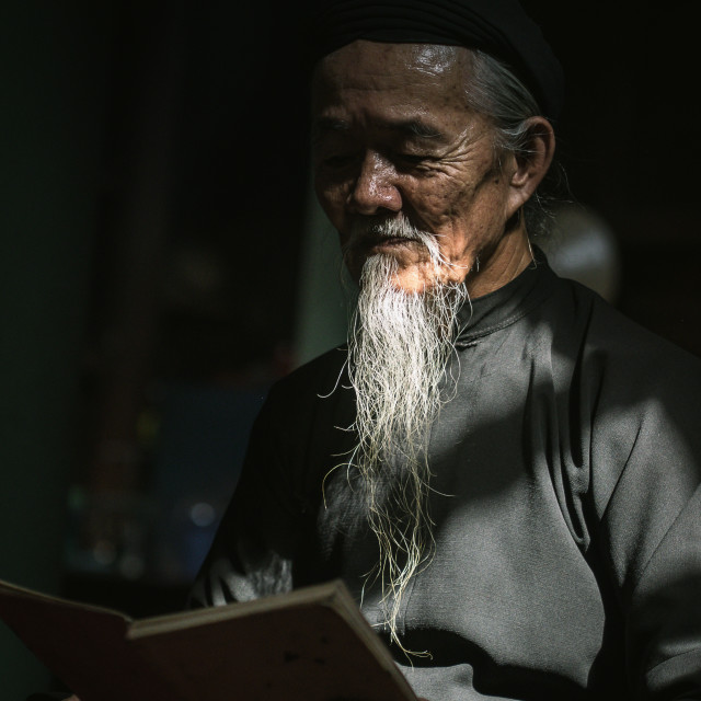 """a calligraphy men reading book at Long Son"" stock image"