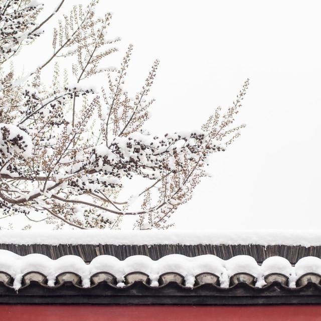 """Zen Of Snow"" stock image"