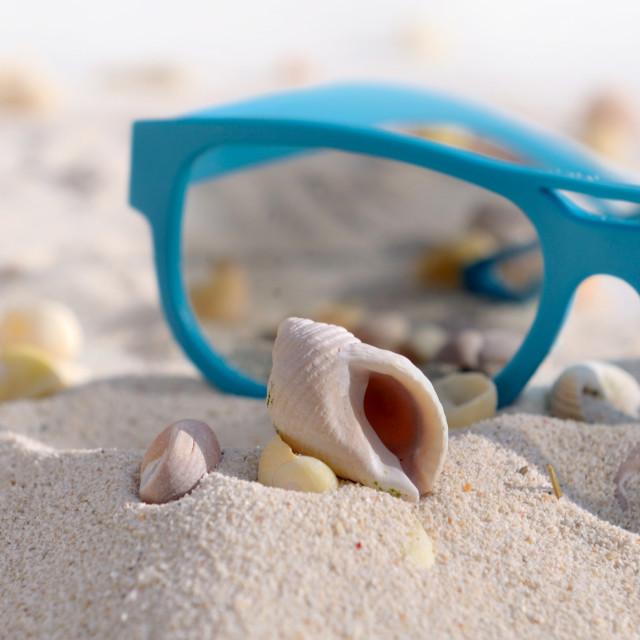 """seashell and sunglasses"" stock image"