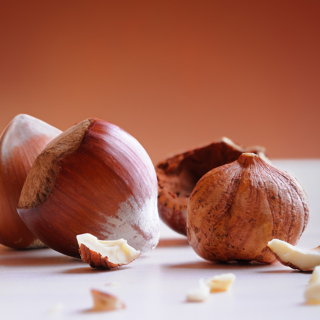 """""""Group of hazelnuts on a white table vertical composition"""" stock image"""