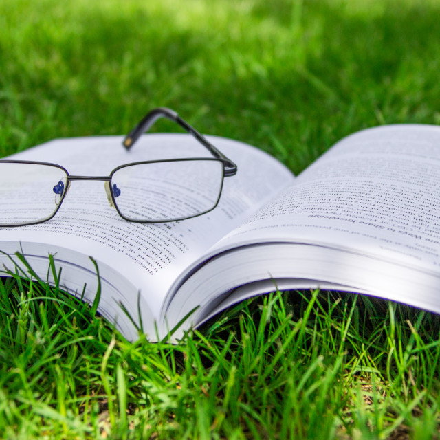 """Opened book on the grass"" stock image"