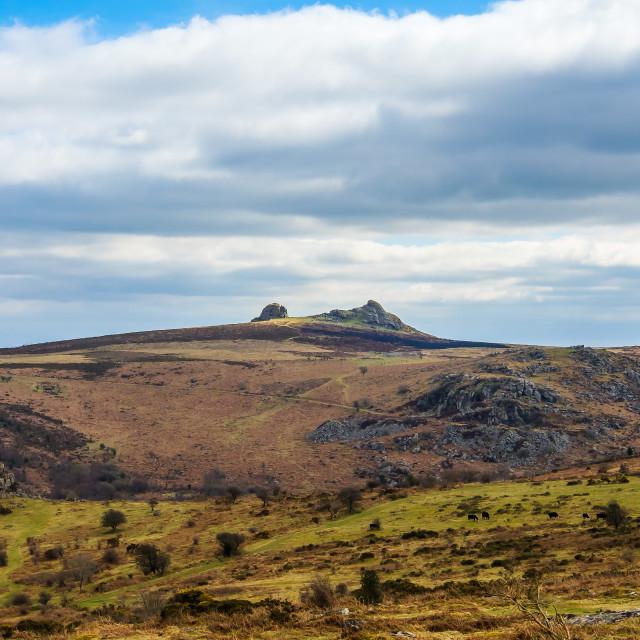 """Haytor on Dartmoor"" stock image"