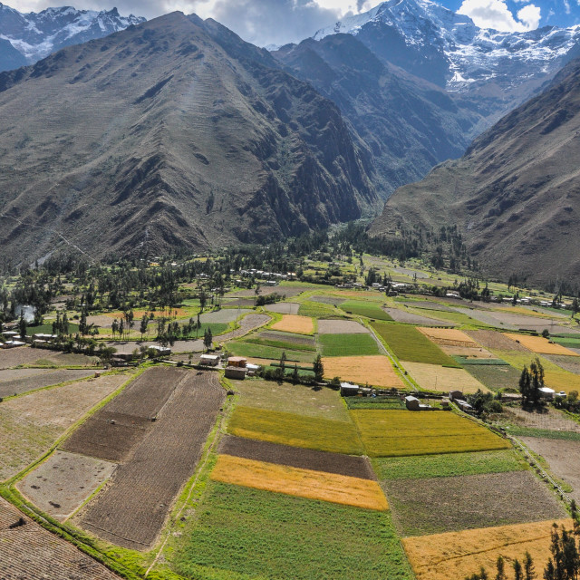 """Andes Field of Green"" stock image"