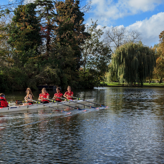 """""""Rowers on River Ouse, Bedford, UK"""" stock image"""