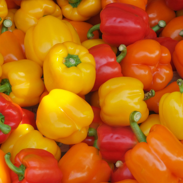 """Colourful Peppers"" stock image"