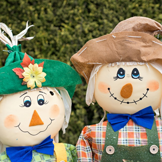 """Scarecrows"" stock image"