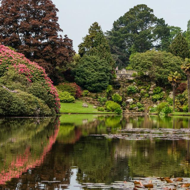 """Sheffield Park Gardens"" stock image"