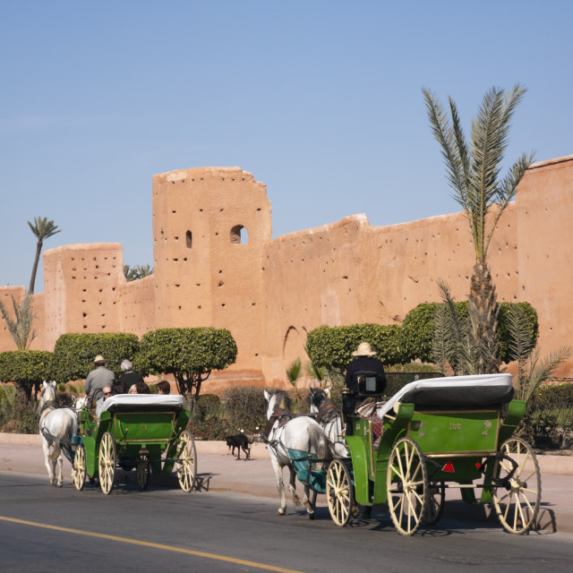 """Marrakech Caleches"" stock image"