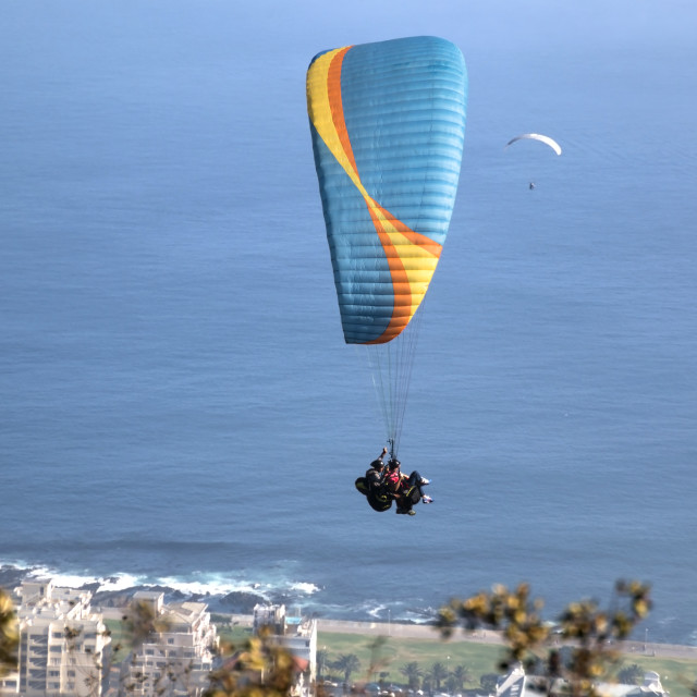 """Paragliding off Signal Hill, Cape Town"" stock image"