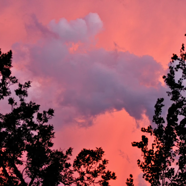 """""""Cotton Candy Sky"""" stock image"""