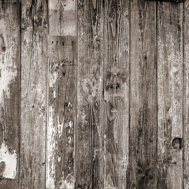 """""""Old grunge wooden wall texture"""" stock image"""