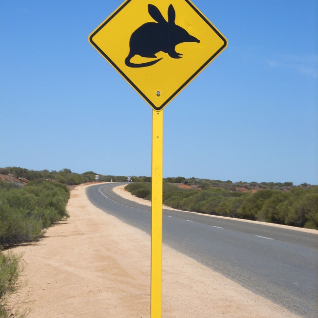"""Bilby sign"" stock image"