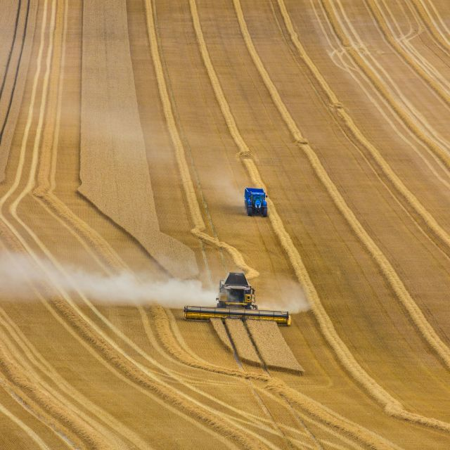 """Harvest Time"" stock image"