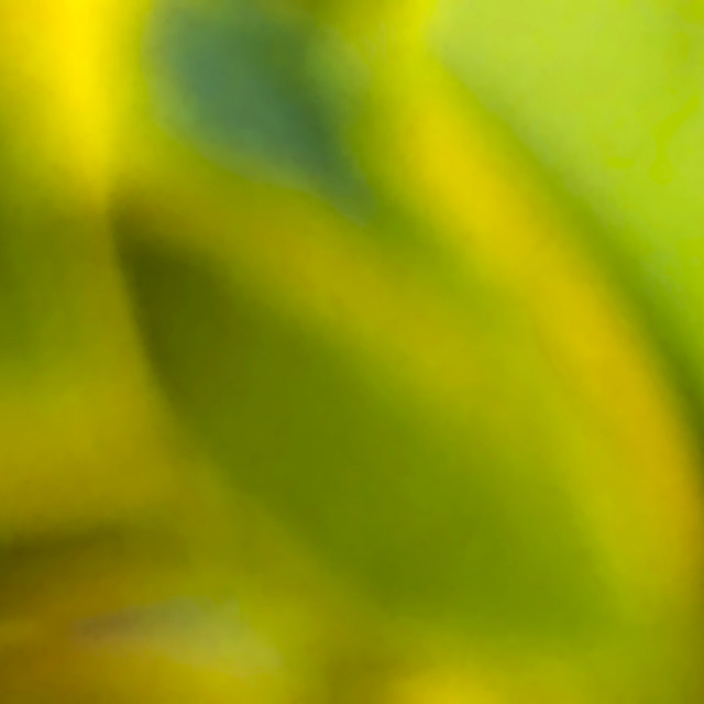 """Green"" stock image"