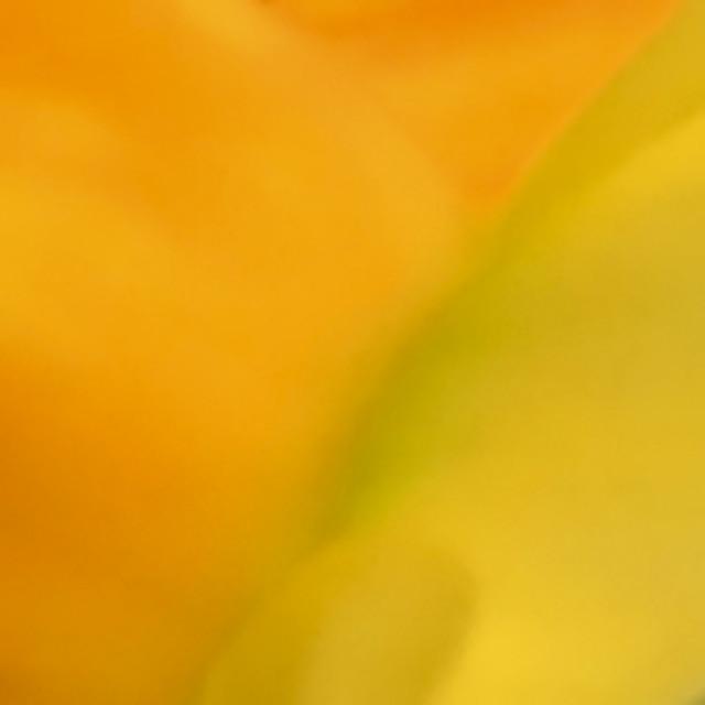 """""""Pastel background"""" stock image"""