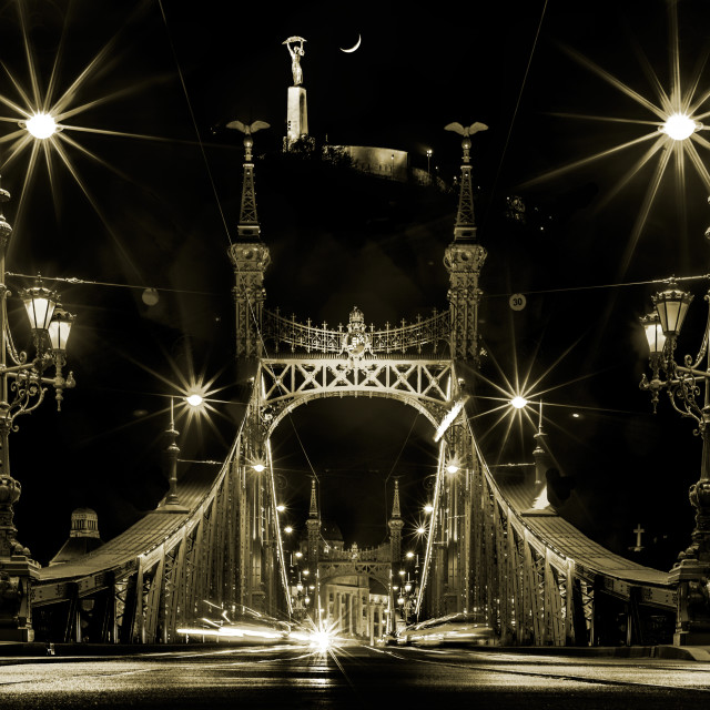 """Liberty Bridge tinted B&W"" stock image"