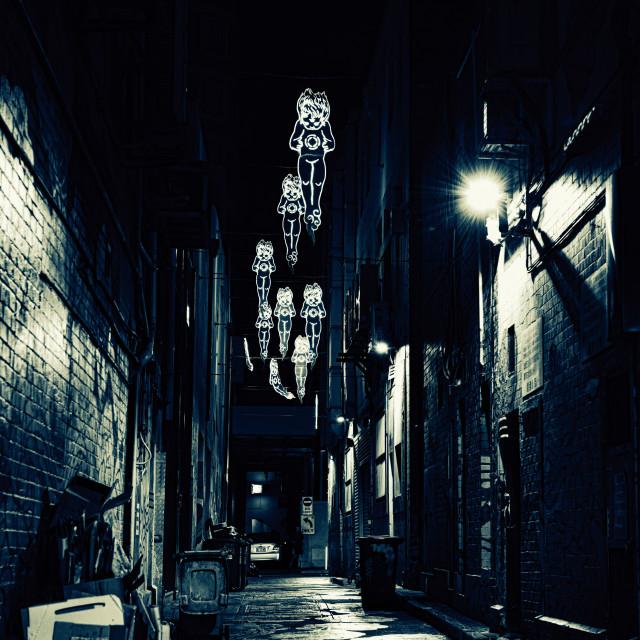 """Alleyway"" stock image"