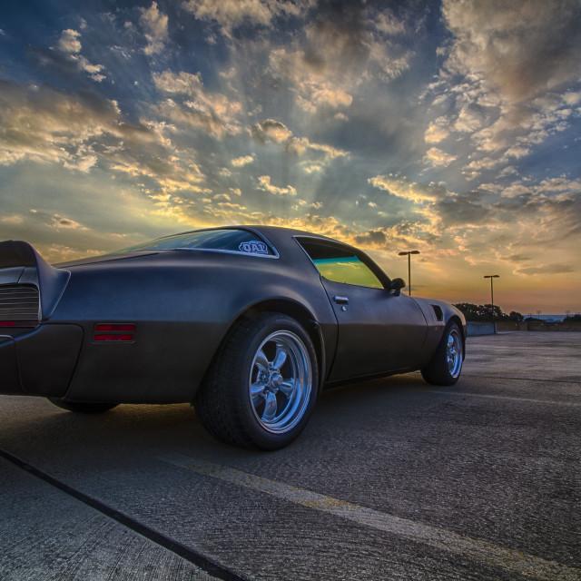 """1979 Pontiac Trans Am"" stock image"