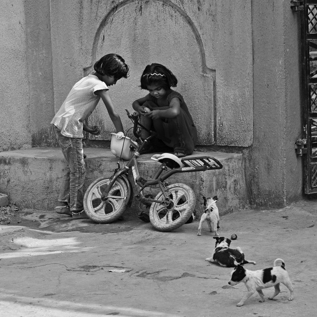 """Indian kids playing while stray pups loiter."" stock image"