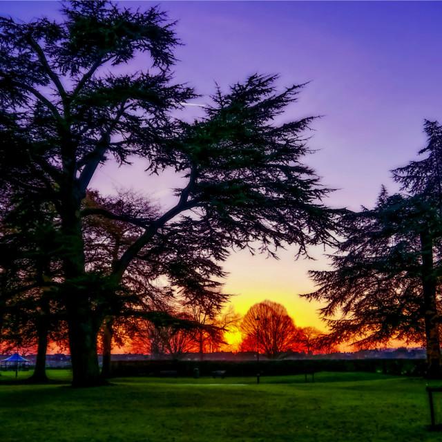 """""""Sunset landscape"""" stock image"""