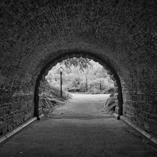 """""""Tunnel in Central Park"""" stock image"""