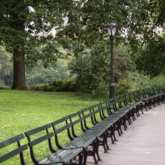 """""""Park Benches"""" stock image"""