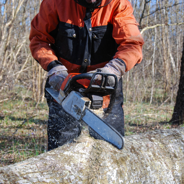 """Chainsaw in action"" stock image"
