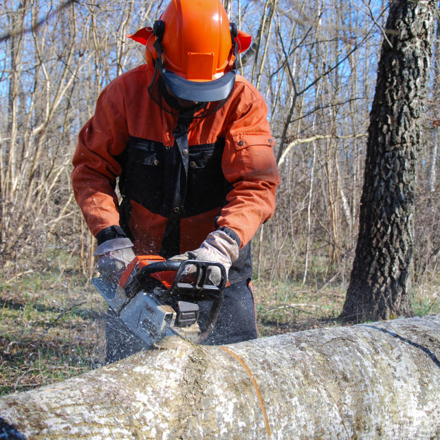 """""""Lumberjack with a chainsaw"""" stock image"""