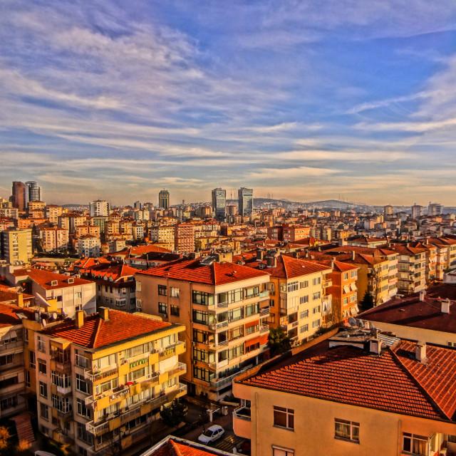 """Istanbul skyline"" stock image"