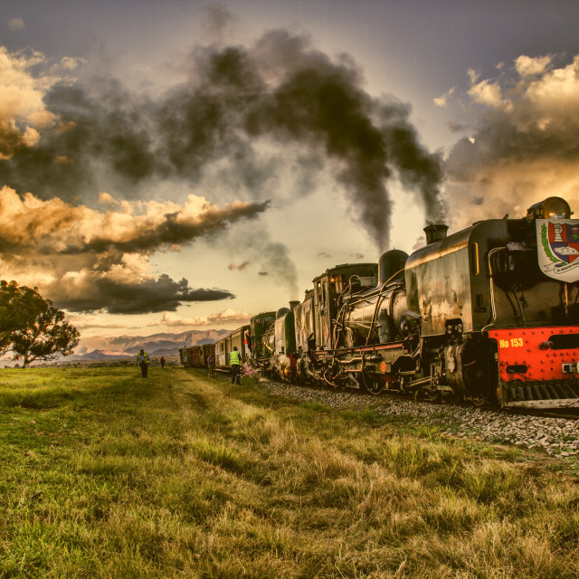 """Train in the field"" stock image"