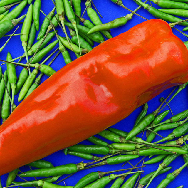 """""""Red Pepper and Chillies"""" stock image"""
