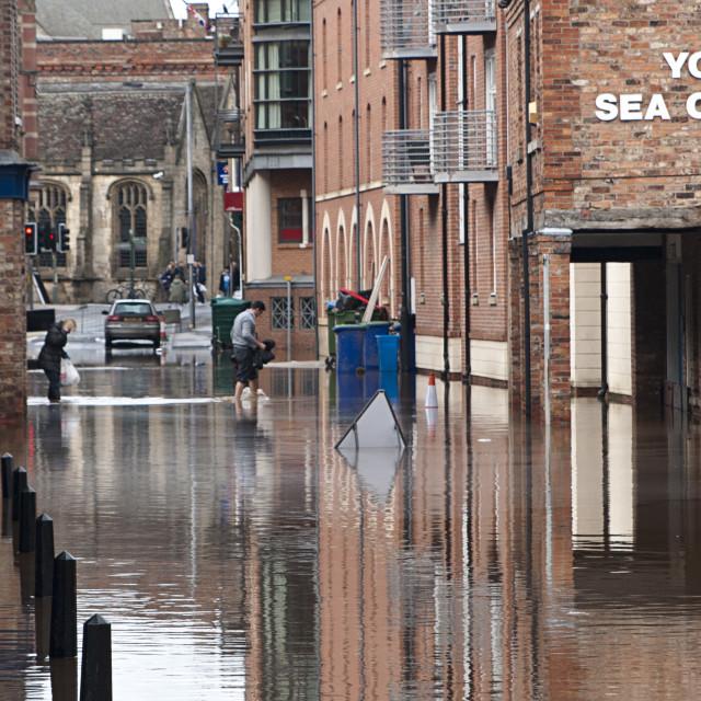 """Flooded Street"" stock image"