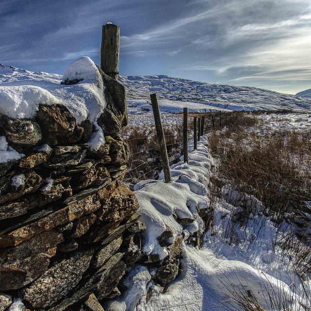 """""""A winters scene."""" stock image"""