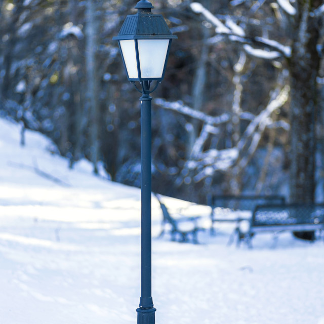 """""""lamppost in snowy park 2"""" stock image"""