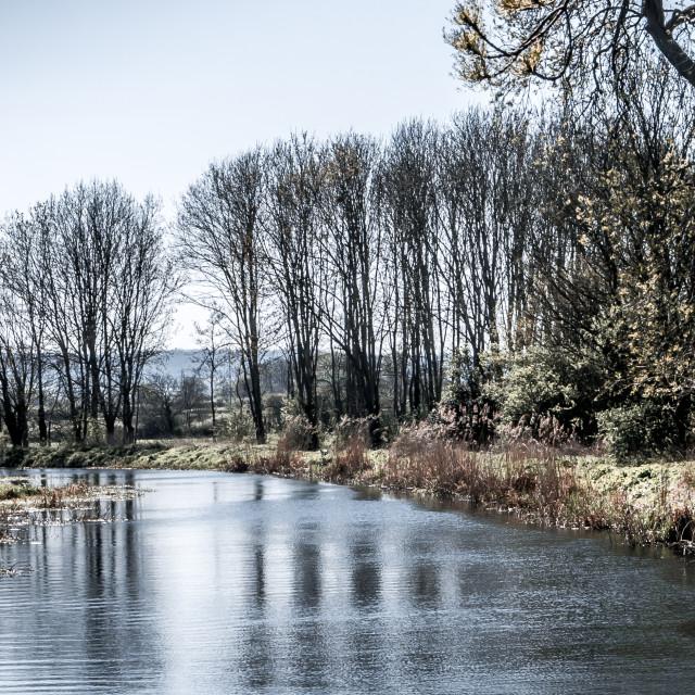 """A Bleak River Scene"" stock image"