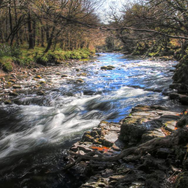 """River Scenery"" stock image"